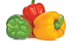 traffic light peppers (cropped)