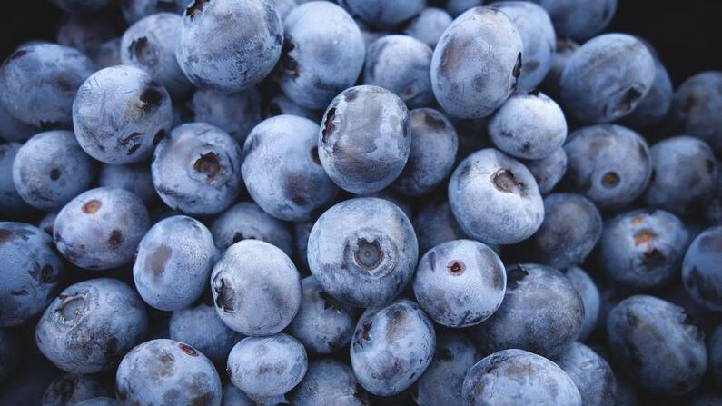blueberries (cropped)